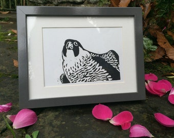Peregrine Falcon bird linocut print - hand-pulled, limited edition