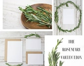Styled Stock Photography | The Rosemary Collection | Invitations with Kraft Envelope | Rosemary | Digital Images