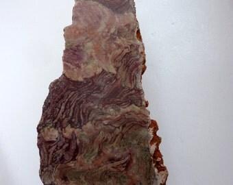 STROMATOLITE - PHOTOSYNTHESIS - STROMATHOLITHE - Stromatolith