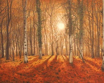 New Forest Woodland Painting Sunset through forest