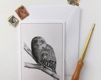 Greeting Card - Tawny Frogmouth