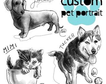 Custom Pet Portrait Illustration Digital Drawing