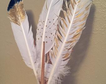 Fancy Feathers: Set #1