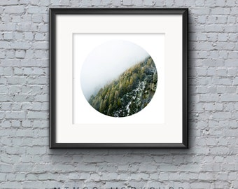 Foggy Forest Print, Circle Print, Misty Forest, Instant Download