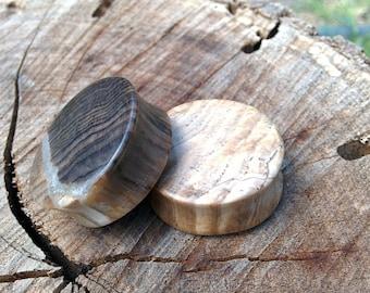 30mm (1 3⁄16 Inch) Petrified Wood Plugs.