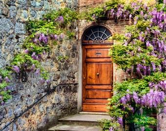 Old Wooden Door, Montepulciano Italy, Old Door Print, Wisteria Door, Wooden Door, Wall Art, Rustic Door, Fine Art Photograph