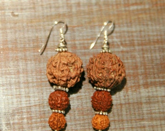 Argenmto hook earrings 925 and rudrashka seeds