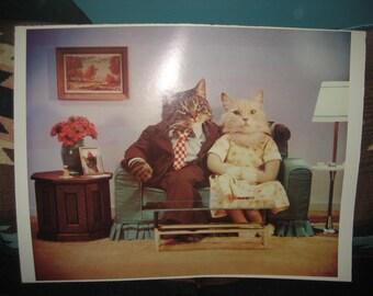 Funny Cat Couple Print