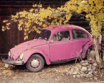 Pretty in Pink - VW Beetle Photo - Vintage VW Photography - Volkswagen Beetle Photograph - VW Bug Print - Vintage Car Photography - Pink Car