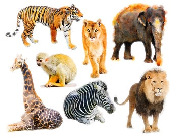 Animals Clipart Set - clip art set of safari animals - jungle animals - lion, giraffe, zebra, elephant, watercolor