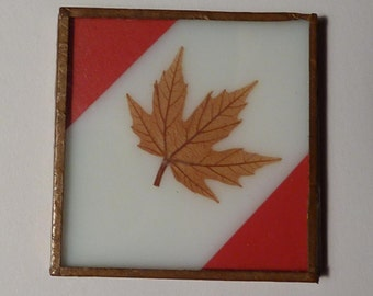 Miniature Framed Maple Leaf - Made from Real Maple Leaves