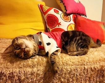 Kitty Raglan T-shirt, Cat Shirt, Kitten Pyjamas, Cat PJs