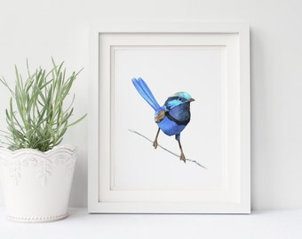 Blue wren print of watercolour painting BW110DL, printable art, downloadable print, blue wren watercolor painting