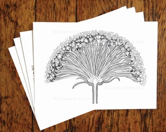 Set of 4 cards (Flower Cross Section) -Floral-Botanical-Greeting Cards-Wedding-Birthday-Thank You-Card-Hand drawn-Blank Cards-Pen and Ink