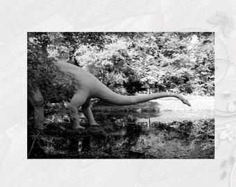 "Post card greeting card ""Diplodocus"" dinosaur - [# GK. 2011.029]"