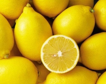 Lemon Fresh Fragrance Oil Candle/Soap Making Supplies