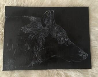 White on black wolf