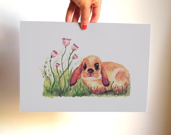The rabbit Watercolour illustration