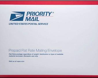 Rush/ overnight priority mail