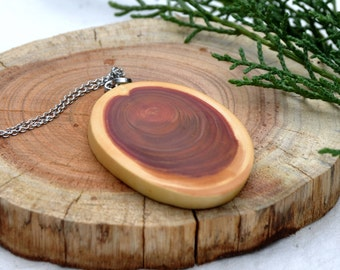 Wood Necklace, Natural Wood Pendant, Wood Slice Jewellery, Rustic Jewelry, Rustic Necklace, Boho Necklace, Statement Jewelry
