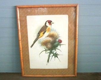 Vintage Bird Botanical Print Faux Bamboo Frame Botanical Bird Vintage Print Natural