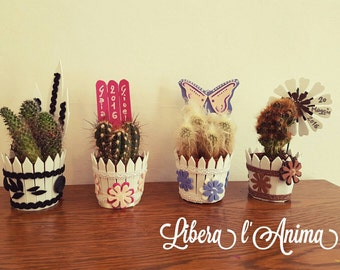 Original and custom plants