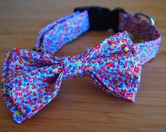 Maddie Dog Bow Tie & Collar