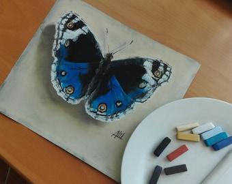 Butterfly. Pastel on sandpaper.