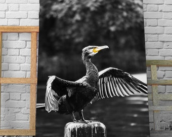 Cormorants Dry - Drawing on canvas varnish Premium canvas - Photo and creating Global Graphic Arts