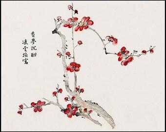 Cherry Blossom Print - Sakura Print - Botanical Digital Print - Botanical Vintage Print - Chinese Art - Woodblock Print - Oriental Art