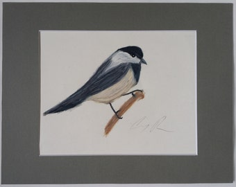 Black Capped Chickadee Colored Pencil Drawing