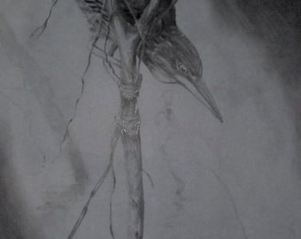 Charcoal Sketch of a Heron