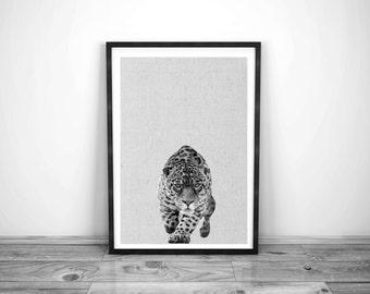 Jaguar Print, Nursery Kitty Animal Wall Art, Wall Art Print , Black and White Nursery Decor, Art Print , Animal Print, Nursery Printable