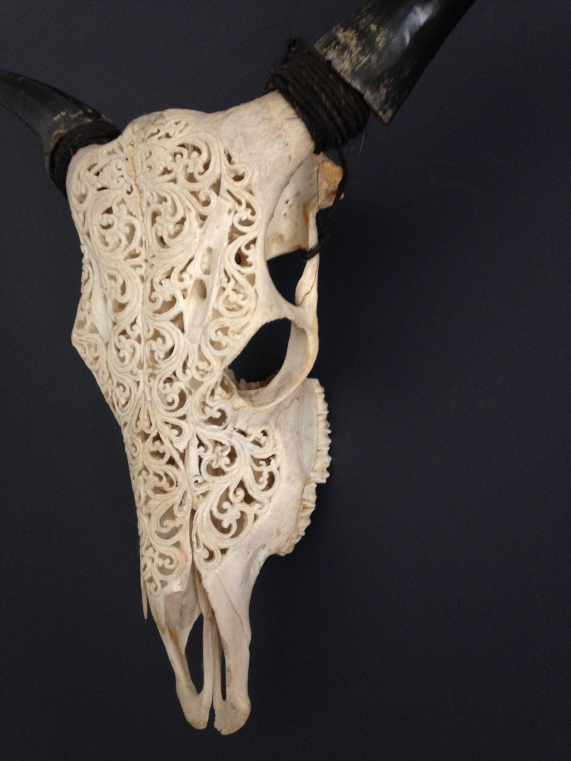 Hand carved laquered cow skull boho wall decor free shipping