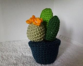 Cactus w/flower- amigurumi
