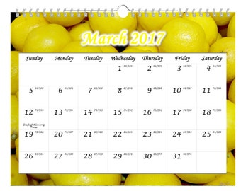 "2017 Wall Calendar, January - December, 11"" x 8.5"", Enjoy the Fruits"