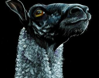 Sheep Portrait - art print, pencil drawing, animal print, wall art