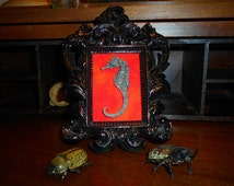 Victorian Inspired Beautifully Framed Wire Mounted Real Large Seahorse Specimen