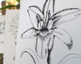 Day Lilly - Screen Print, Black Ink, White Paper