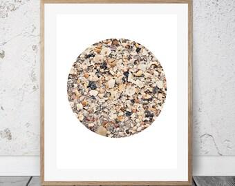 Sea Shells Photograph, Digital Download, Beach, Circle Art, Coastal Decor