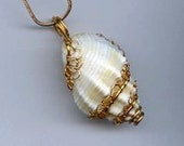 Lacy-Bezeled Shell Necklace