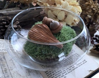 Glass Bowl Terrarium - Vintage Glass Candle Dish - Trinket Bowl