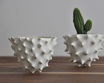 Gold Tipped Tall Conch Bowl - White Gold Modern Ceramic Bowl Modern Planter Ceramic Pot