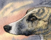 Greyhound Whippet dog print 5x7 8x10 11x14 sleek brindle sighthound gazehound lurcher IG Italian from a Susan Alison watercolour painting