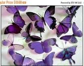 NEW YEAR SALE 12 x Mixed Purple 3D Transparent Butterflies