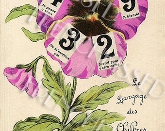 French Victorian Language of Numbers Pansy Postcard Digital Download