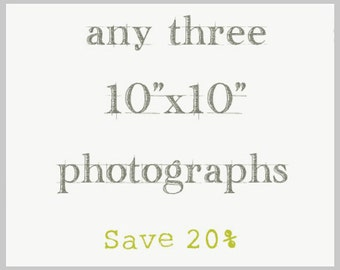 "Photography Print Set - Three 10""x10"" prints"