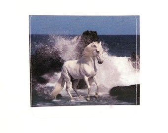 BOGO - 4 Sticker Decal, White Stallion in the Surf, Scrapbooking, Decoupage, Collage, 38mm, 4 pc - Buy 1, Get 1 Free - no coupon