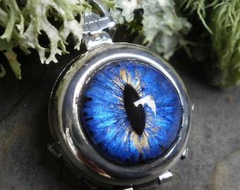 Gothic Steampunk Blue Silver Eye 4 way Photo Locket