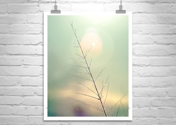 Minimalist Art, Vertical Print, Nature Photography, Abstract Nature, Black and White, Fine Art Photography, Elegant Art, MurrayBolesta